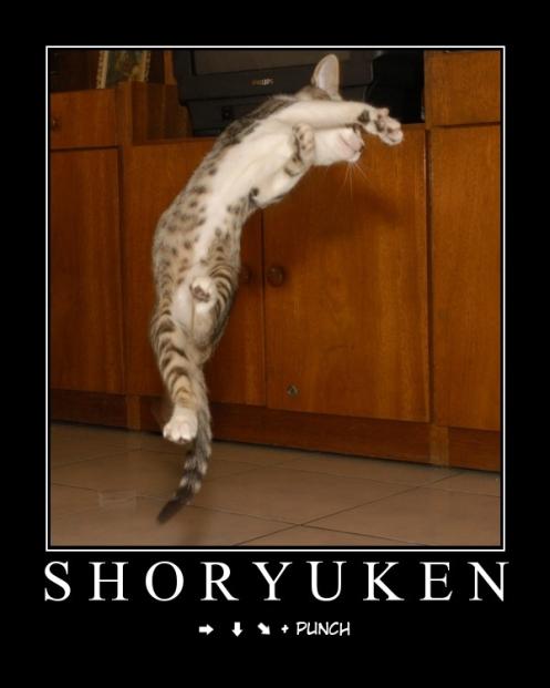 shoryukenou0fs4